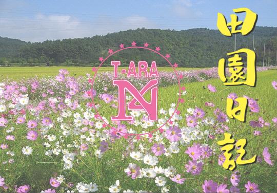 t-aran4-130422